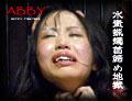 浅川サラ 『本気で白目を剥くまで首を絞めろ! 極悪非道の仕打ちも徐々に快感に。逆さ吊り水責め地獄』の DL 画像。